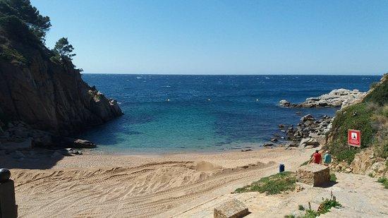 La playa Cala d'en Carlos / Camping Llevado se encuentra en el municipio de Tossa de Mar, perteneciente a la provincia de Girona y a la comunidad autónoma de Cataluña