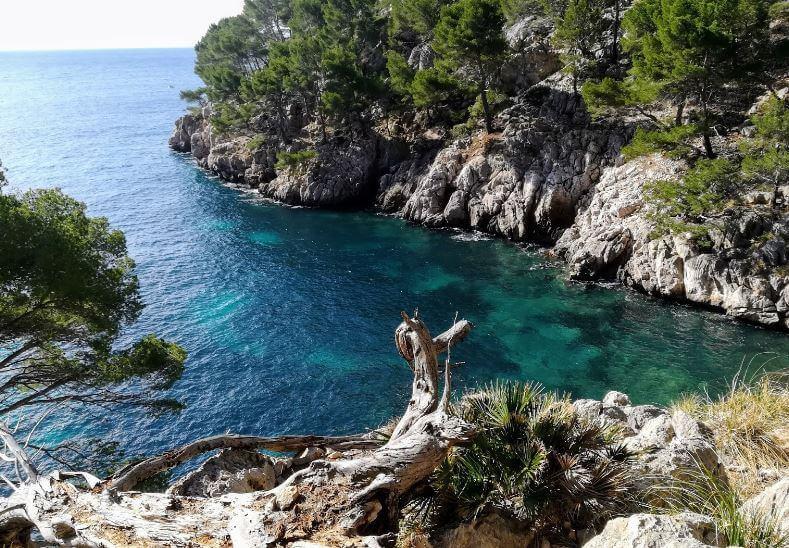 La playa Cala en gossalba se encuentra en el municipio de Pollença, perteneciente a la provincia de Mallorca y a la comunidad autónoma de Islas Baleares