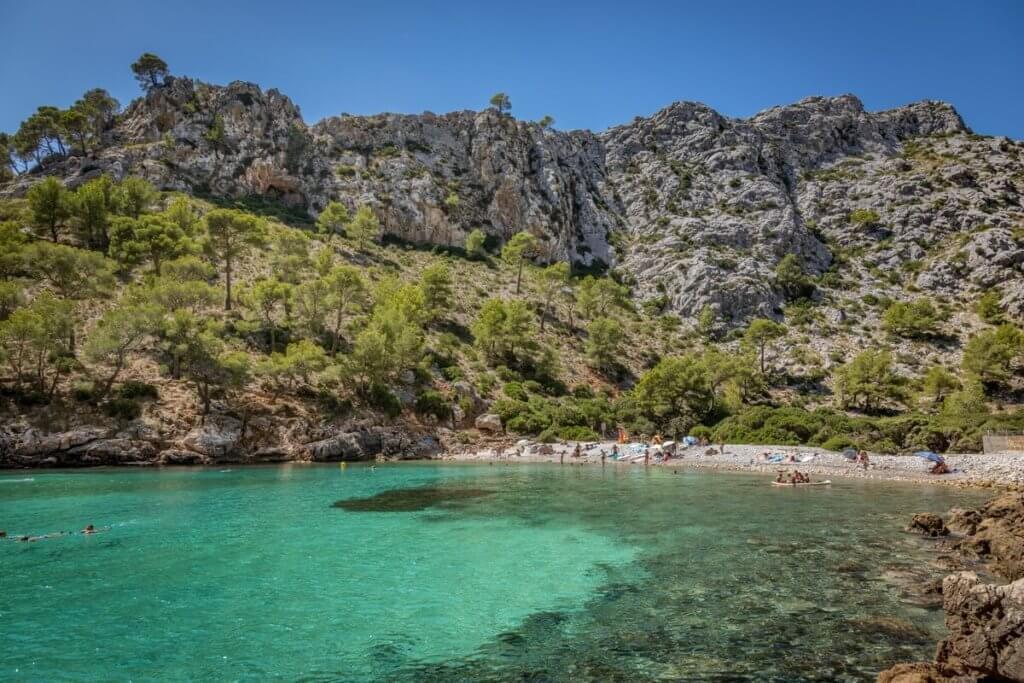 La playa Cala Murta se encuentra en el municipio de Pollença, perteneciente a la provincia de Mallorca y a la comunidad autónoma de Islas Baleares
