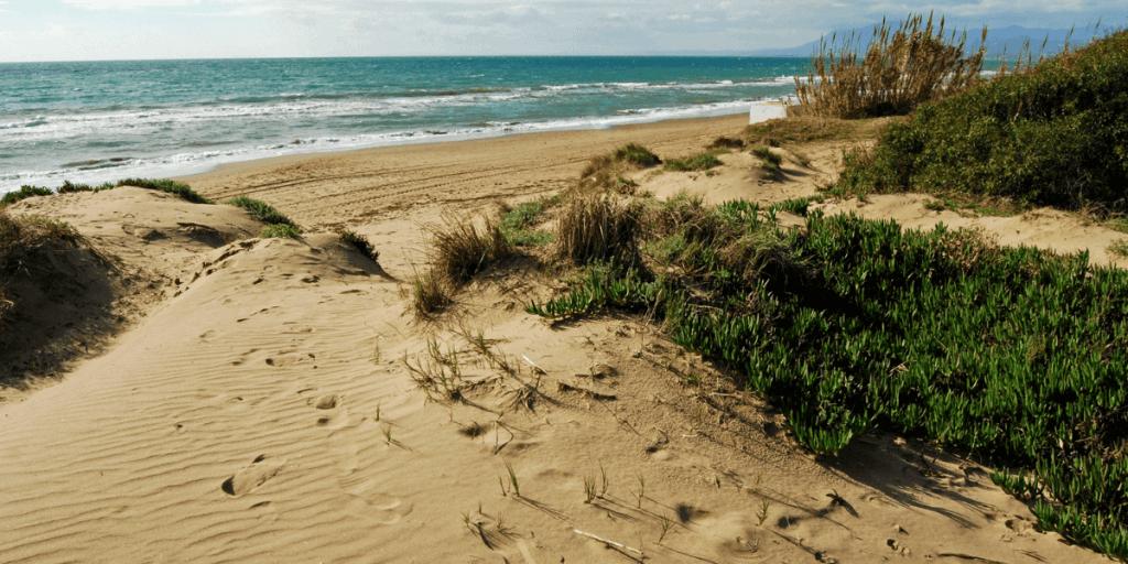 La playa Artola se encuentra en el municipio de Marbella, perteneciente a la provincia de Málaga y a la comunidad autónoma de Andalucía