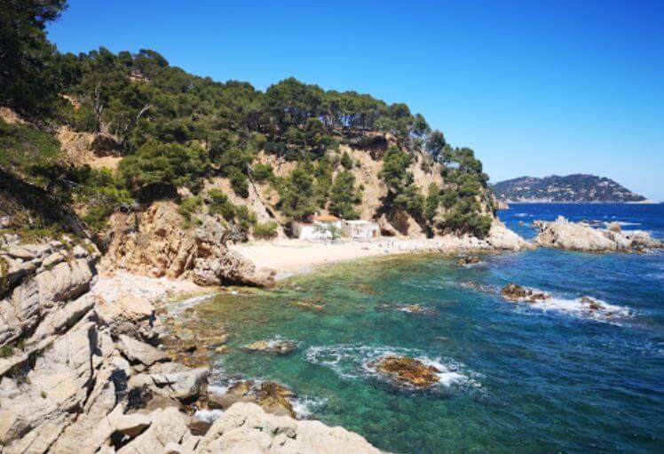 La playa Cap de Planes se encuentra en el municipio de Palamós, perteneciente a la provincia de Girona y a la comunidad autónoma de Cataluña