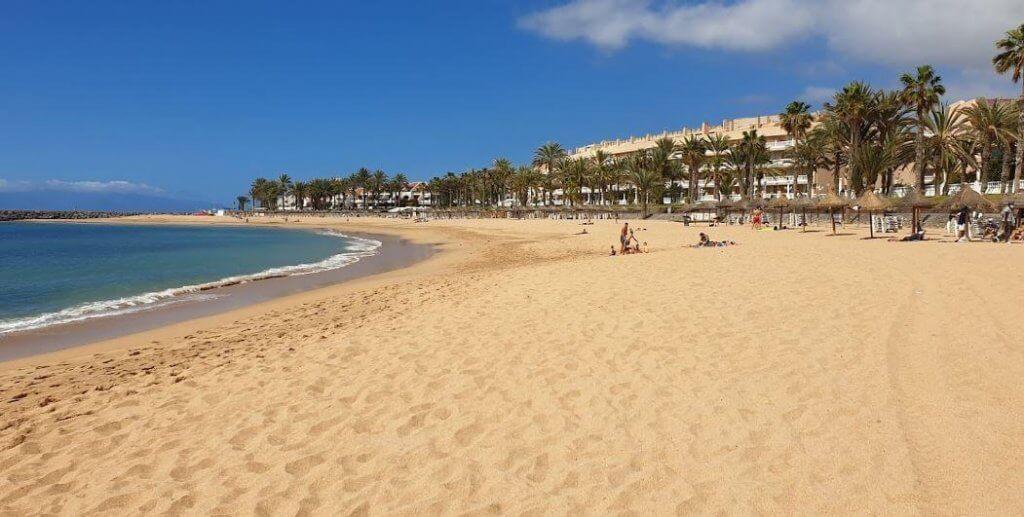 La playa El Camisón se encuentra en el municipio de Arona, perteneciente a la provincia de Tenerife y a la comunidad autónoma de Canarias