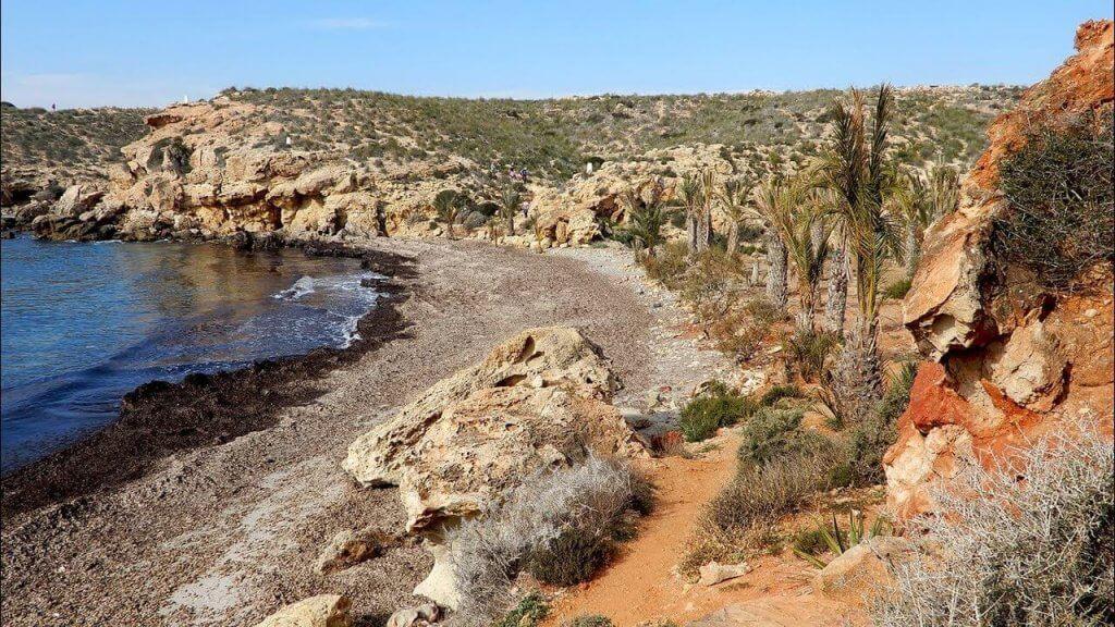 La playa El Palomarico / Cala del Muerto se encuentra en el municipio de Mazarrón, perteneciente a la provincia de Murcia y a la comunidad autónoma de Región de Murcia