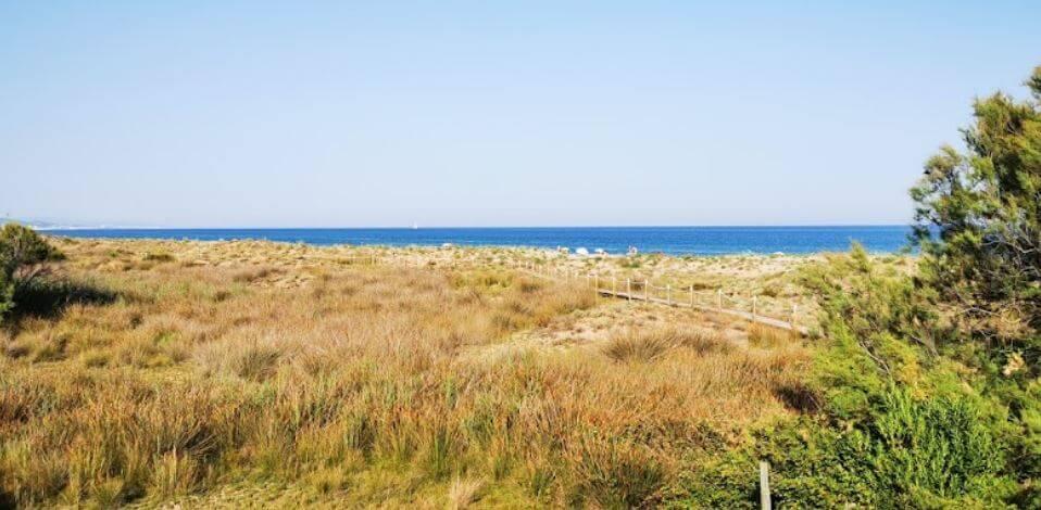 La playa La Paella se encuentra en el municipio de Torredembarra, perteneciente a la provincia de Tarragona y a la comunidad autónoma de Cataluña