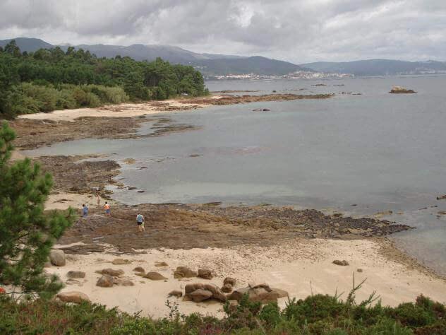 La playa Niñeiriños se encuentra en el municipio de A Pobra do Caramiñal, perteneciente a la provincia de A Coruña y a la comunidad autónoma de GaliciaLa playa Niñeiriños se encuentra en el municipio de A Pobra do Caramiñal, perteneciente a la provincia de A Coruña y a la comunidad autónoma de Galicia