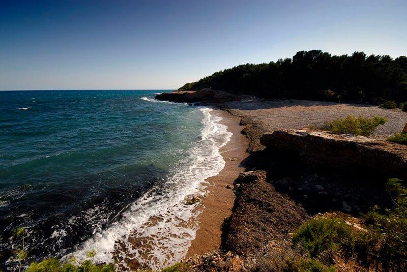 La playa Port Olivet se encuentra en el municipio de L'Ametlla de Mar, perteneciente a la provincia de Tarragona y a la comunidad autónoma de Cataluña