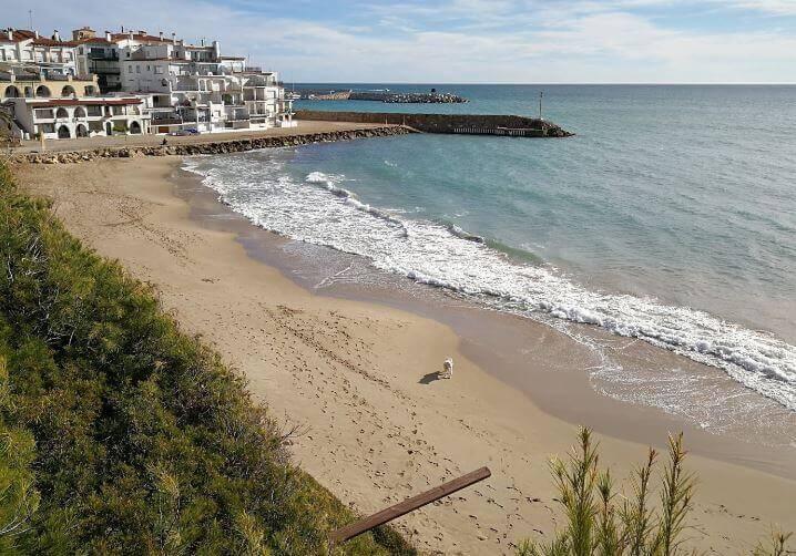 La playa Punta de la Guineu / Platja del Roc de Sant Gaietà se encuentra en el municipio de Roda de Bar, perteneciente a la provincia de Tarragona y a la comunidad autónoma de Cataluña