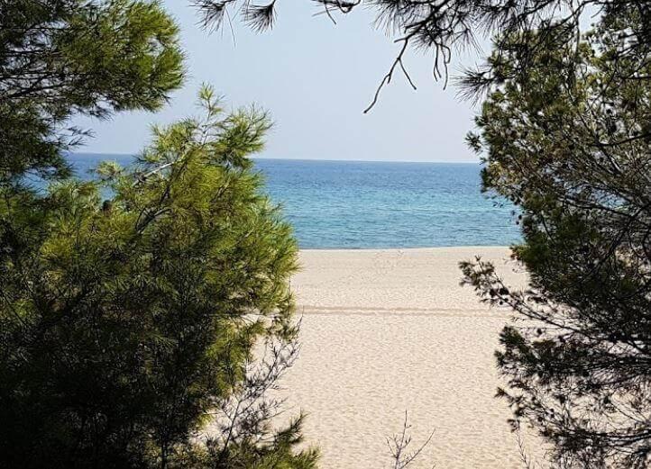 La playa Punta del Riu se encuentra en el municipio de Vandellòs i l'Hospitalet de l'Infant, perteneciente a la provincia de Tarragona y a la comunidad autónoma de Cataluña