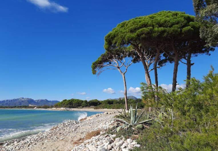 La playa Rifà se encuentra en el municipio de Mont-roig del Camp, perteneciente a la provincia de Tarragona y a la comunidad autónoma de Cataluña