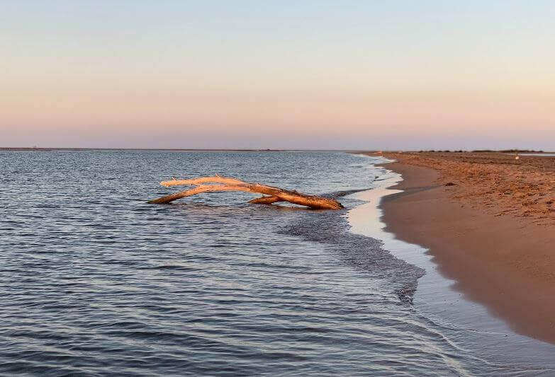 La playa Riumar / Riomar se encuentra en el municipio de Deltebre, perteneciente a la provincia de Tarragona y a la comunidad autónoma de Cataluña