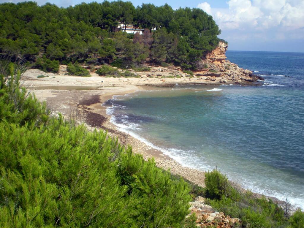 La playa Torrent del Pi se encuentra en el municipio de L'Ametlla de Mar, perteneciente a la provincia de Tarragona y a la comunidad autónoma de Cataluña
